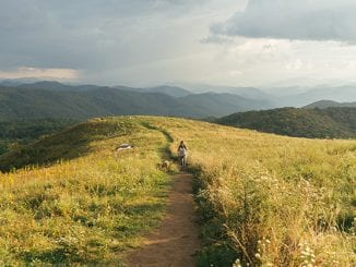 Max Patch, The Smokies, Cocke County, Madison County