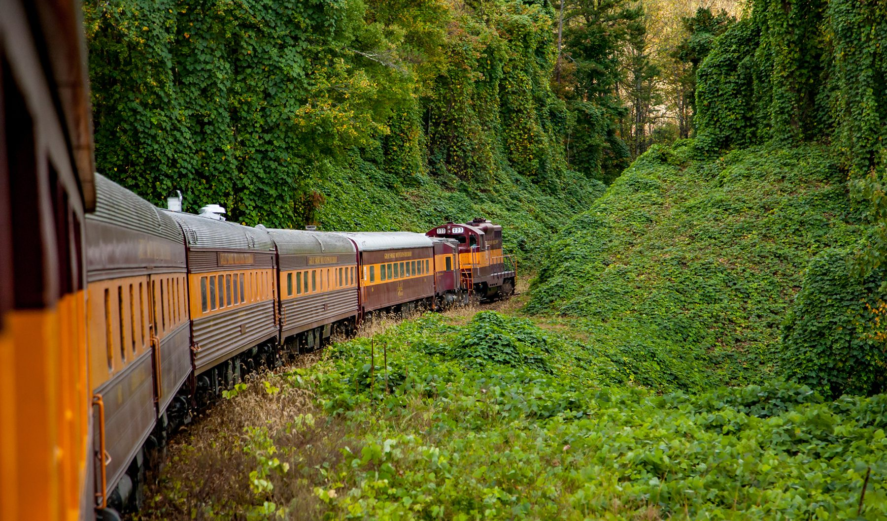 Bryson City Railroad