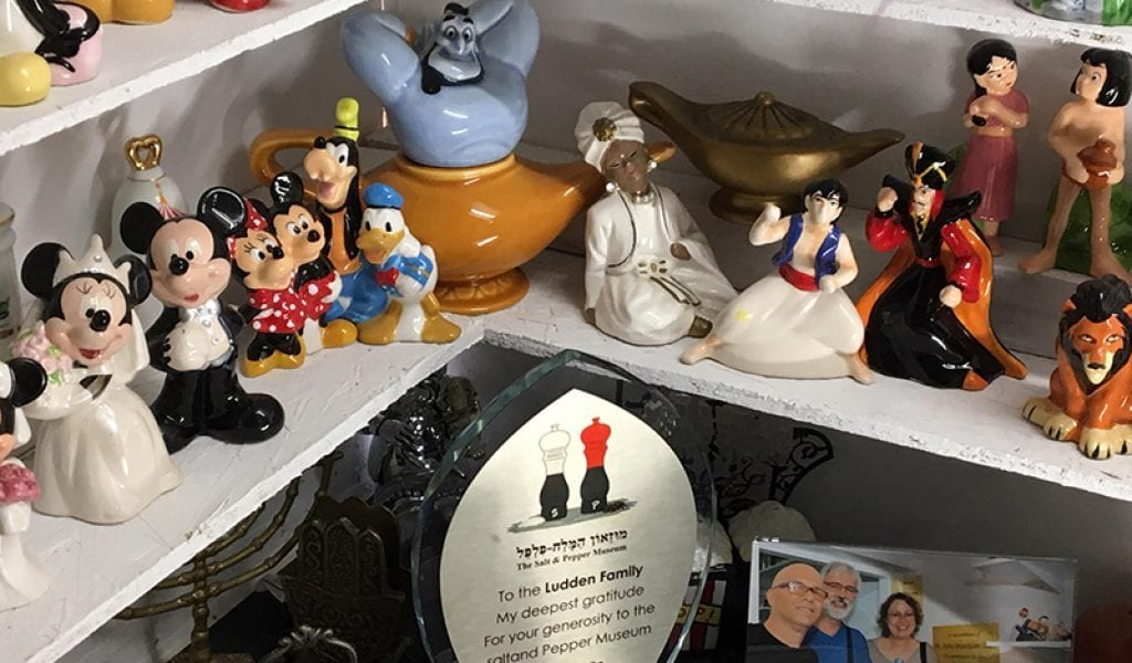 A sampling from the Disney collection at the Salt and Pepper Shaker Museum in Gatlinburg, TN