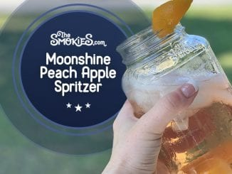 Apple Peach Spritzer