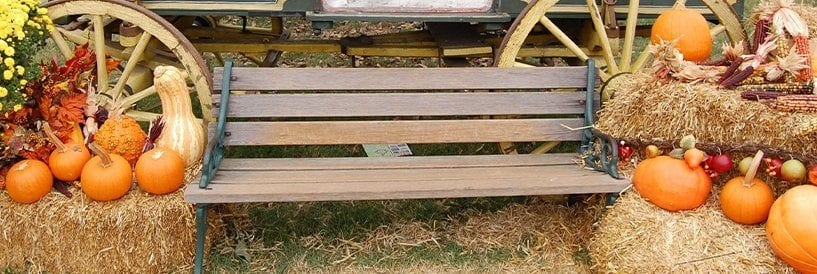 Fall Decor and Bench