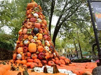 Harvest Festival at Dollywood