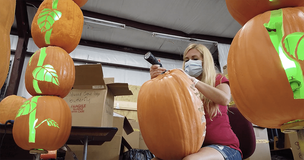 "Dollywood's newest addition to Great Pumpkin LumiNights includes a Wildwood Grove ""Pumpkin Sunflower Field"" display. Artisans are currently working on the new display behind the scenes in preparation for the unveiling (photo courtesy of Dollywood)"