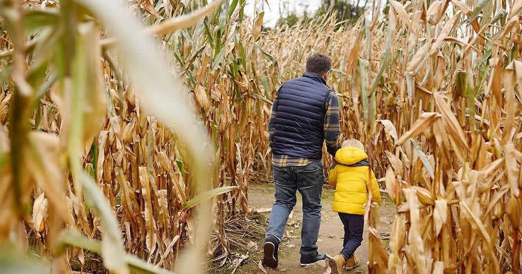 "Kyker Farms invites guests to get ""kornfused"" in the corn fields this fall."