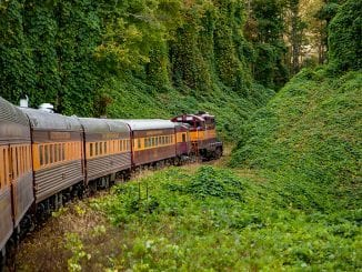 The Great Smoky Mountain Railroad
