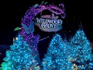 Dollywood's Smoky Mountain Christmas event lights up the theme park with more than 5 million lights (photo by Alaina O'Neal/TheSmokies.com)